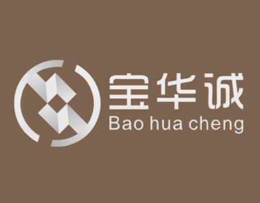 宝华诚投资公司VIS品牌设计
