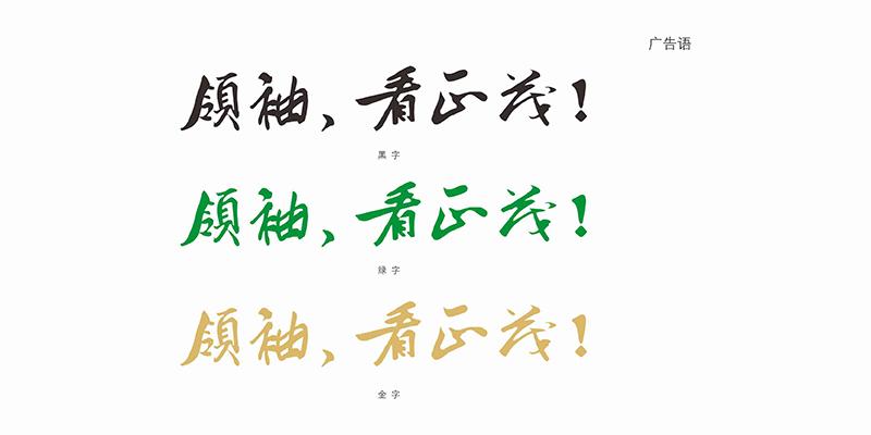 东莞市正茂服饰有限公司VIS设计-youjoys.net