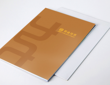 鼎盛投资画册设计
